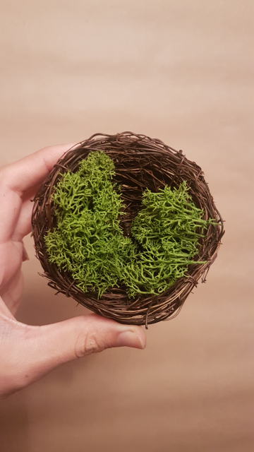 Moss Nest for Fae Baby